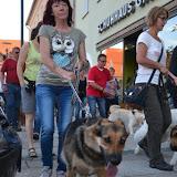 On Tour in Tirschenreuth: 30. Juni 2015 - DSC_0040.JPG