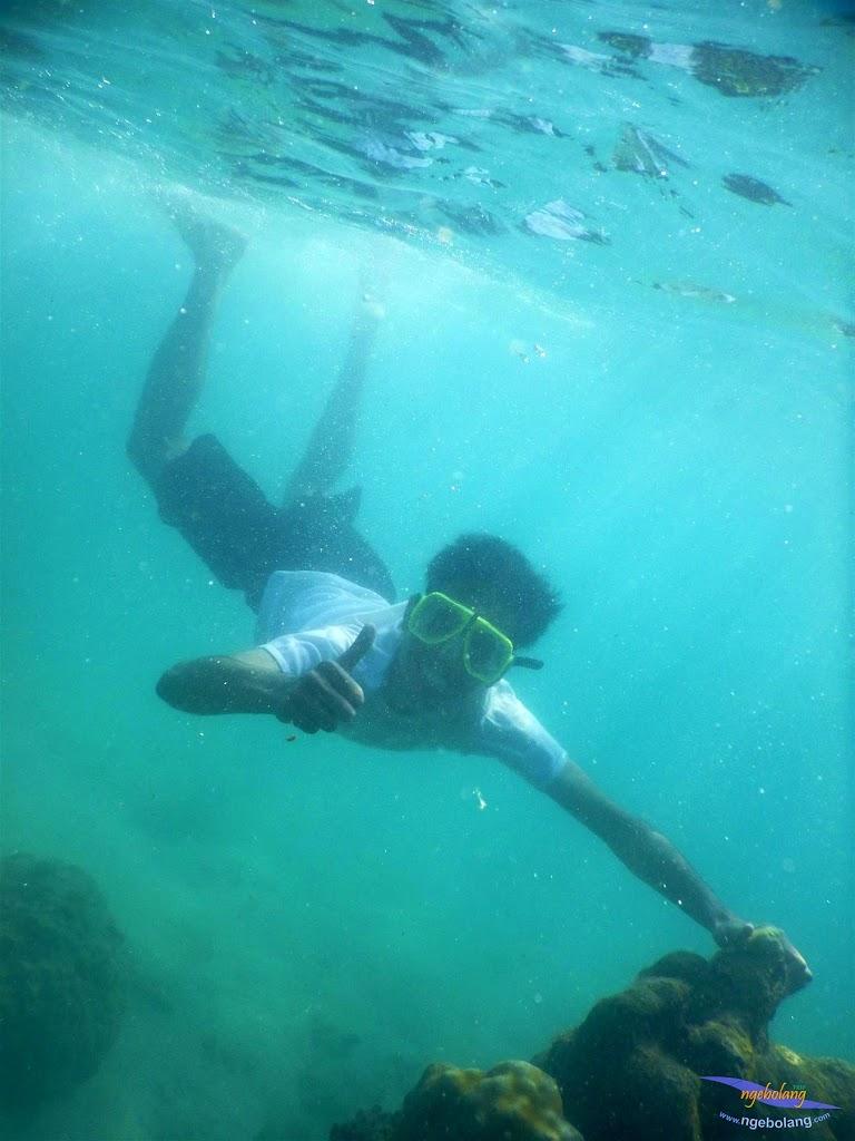 pulau pari, 23-24 mei 2015 29