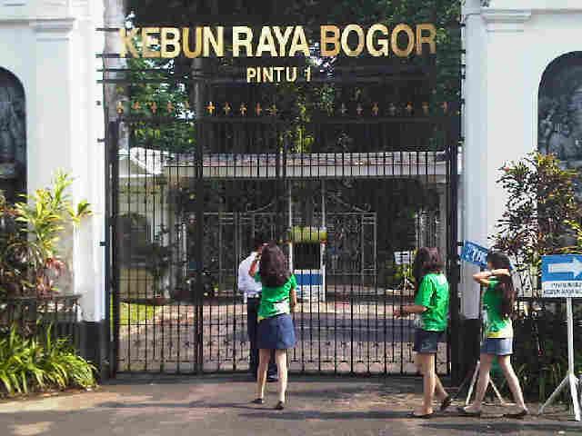 Kebun Raya Bogor Bogor Botanical Gardens Indonesia
