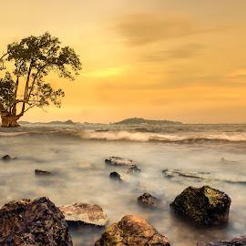 Alone by Muhammad Ikhsan - Landscapes Sunsets & Sunrises ( sunset )