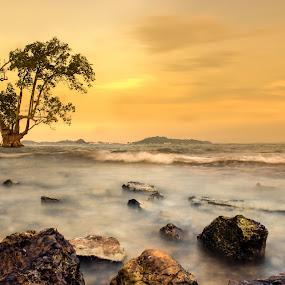 Alone by Muhammad Ikhsan - Landscapes Sunsets & Sunrises ( sunset,  )