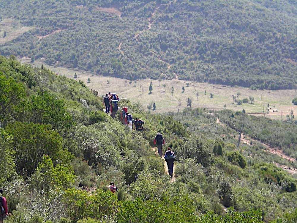 Sortida Sant Salvador de les espasses 2006 - CIMG8388.JPG
