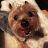 Jade See avatar image