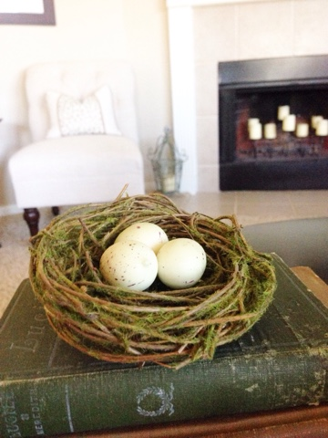 decorative bird's nest