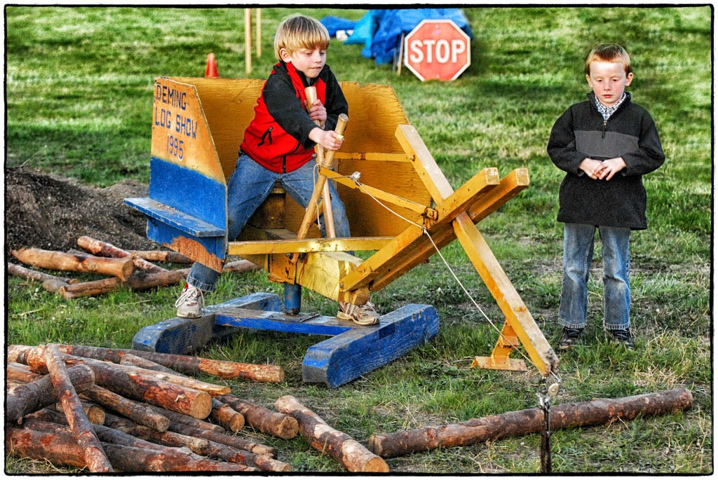 """Working the Logs"" by Celene Wendt"