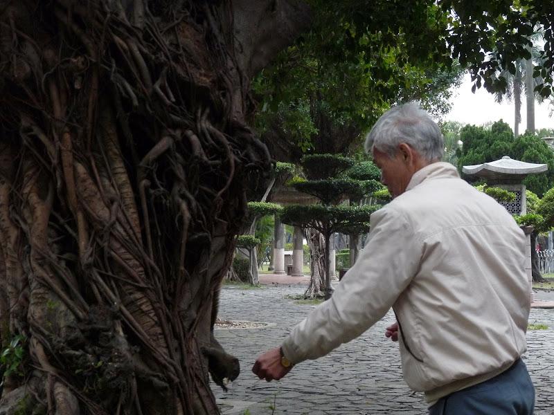 TAIWAN.Taipei .Maison japonaise vers Beitou et Musée National de Taipei à côté du Peace park - P1060433.JPG