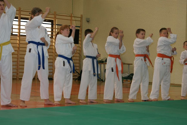 DO 2011 Pokaz karate - DSC00082_1.JPG