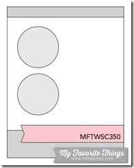 MFT_WSC_350