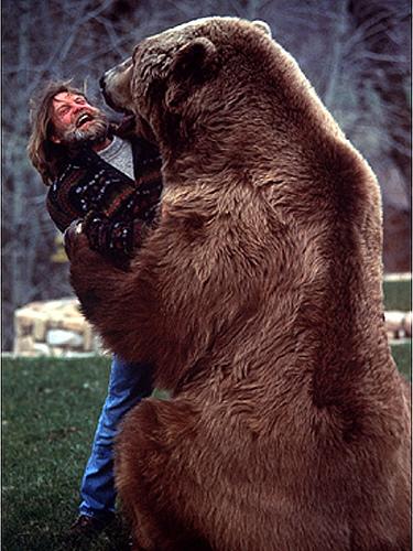 Urso pardo vs Urso polar - Página 2 1463302246_ff171e54dd