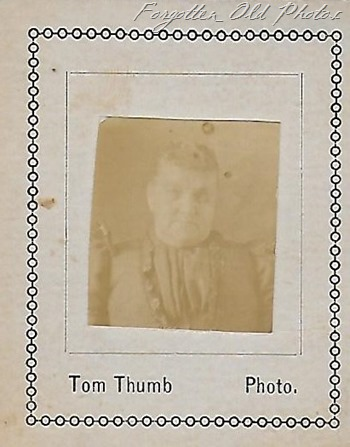 Tom Thumb photo two Nevis