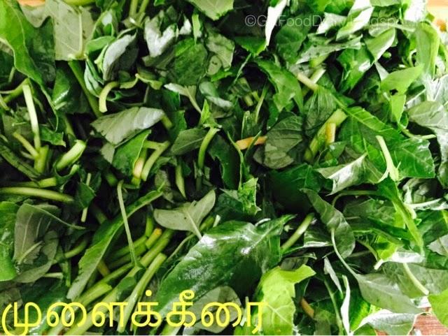 Easy Keerai Masiyal Recipe (Mulai Keerai Kadayal without dal) | SpinachPuree 4