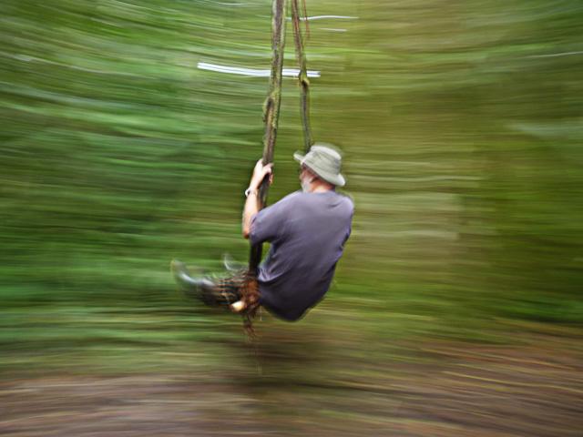 Liana swing