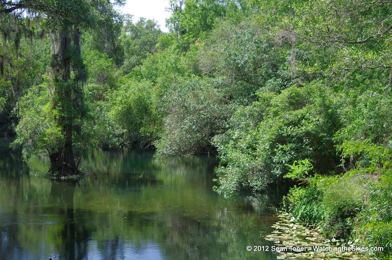 04-04-12 Hillsborough River State Park - IMGP9684.JPG