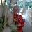Janina Jasinskiene's profile photo