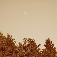 Taborjenje, Lahinja 2005 1. del - 00049.jpg