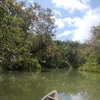 En chalupa por el río Valle