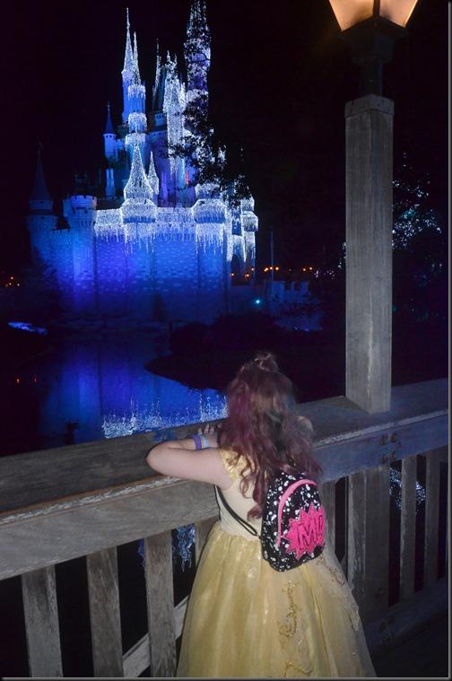 mae blue castle