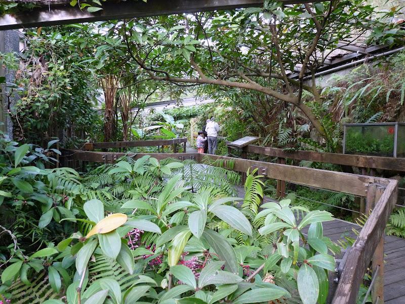 TAIWAN.Taipei. Dans le jardin de lune des nombreuses résidence présidentielle de CKS - P1050064.JPG
