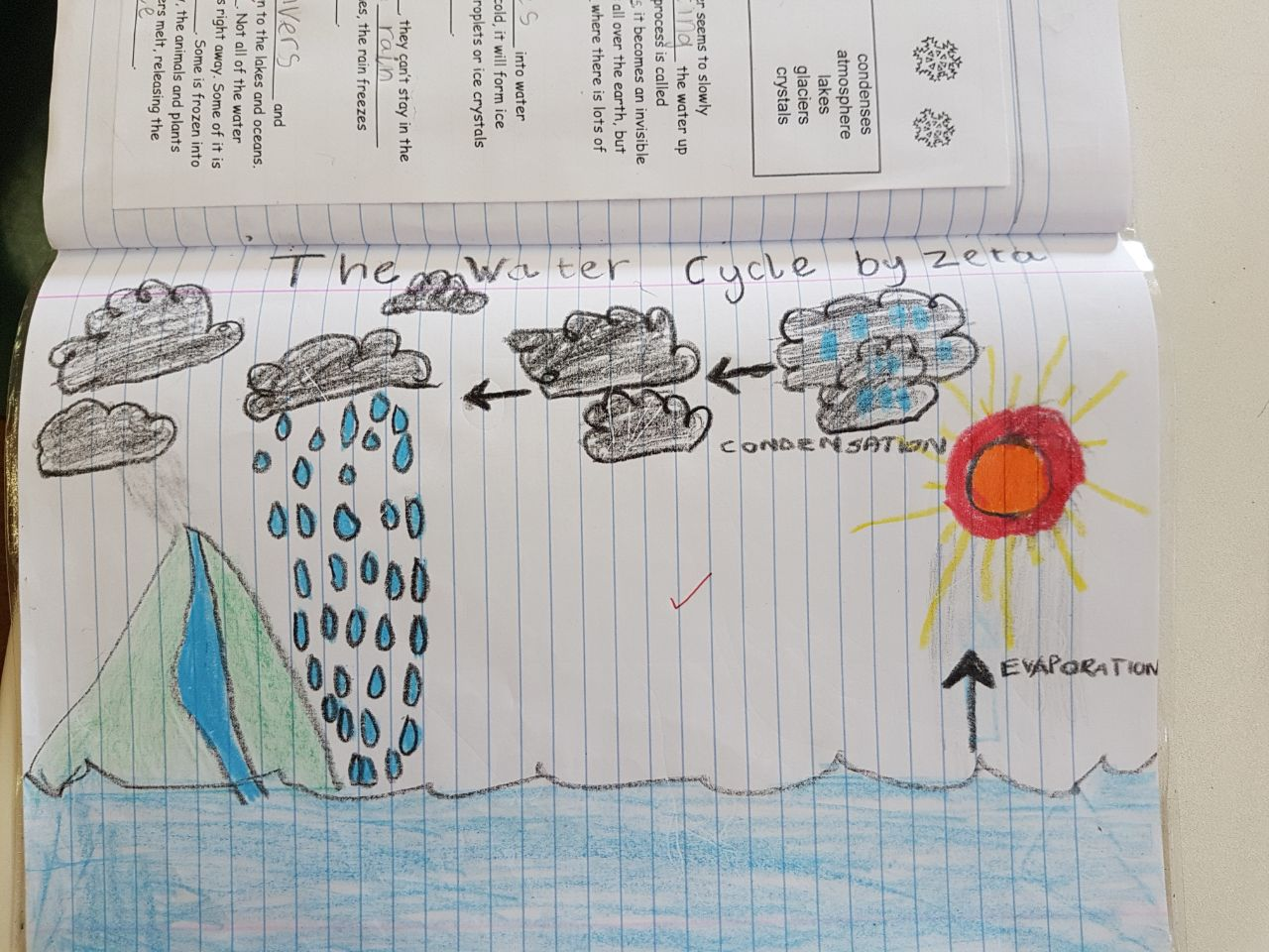 Eco Time Eden Grade 3 Water Cycle
