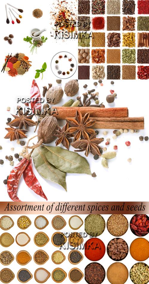 Stock Photo: Assortment of different spices and seeds