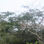 southamerica-2-193.jpg