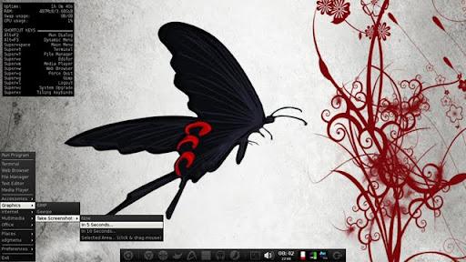 CTKArch 和 ArchBang : 优秀的Arch Linux Live CD