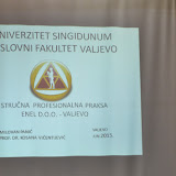Prezentovanje rezultata kreativne studentske prakse - DSC_6550.jpg