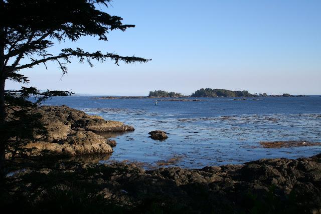 2012 - IMG_5454_Wild_Pacific_Trail.JPG
