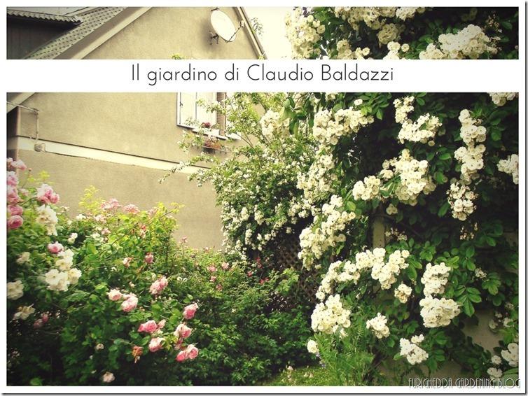 Il giardino di Claudio (8)