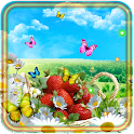 Camomiles n Strawberry LWP icon