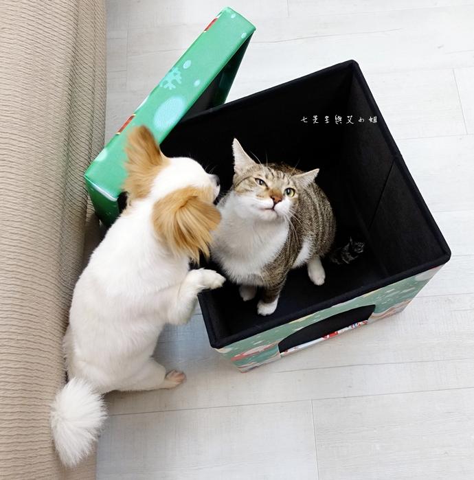 3 isufu舒福家居 寵物窩 收納椅凳