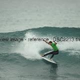 _DSC2213.thumb.jpg