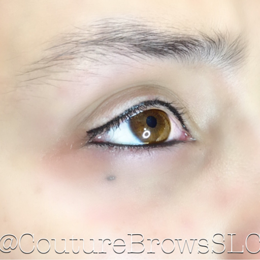 Couture Brows   Microblading Training Academy - Permanent