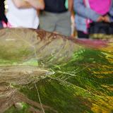 06-20-13 Hawaii Volcanoes National Park - IMGP7764.JPG