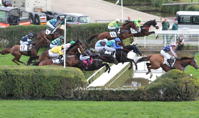Photos Auteuil 7-11-2015 (48h de l'obstacle) IMG_6450