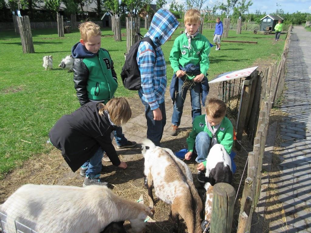 Welpen - Kinderboerderij & Crossbaan - IMG_2486.JPG