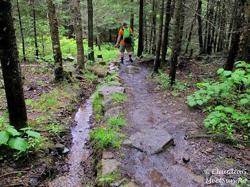 Tura la munte in Canada. Mont Orford.  amenajari simple pentru a separa cursul apei de poteca