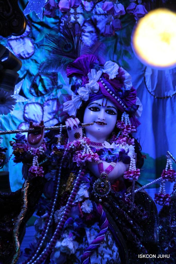 Sharad Purnima Deity Darshan on 16th Oct 2016 (32)