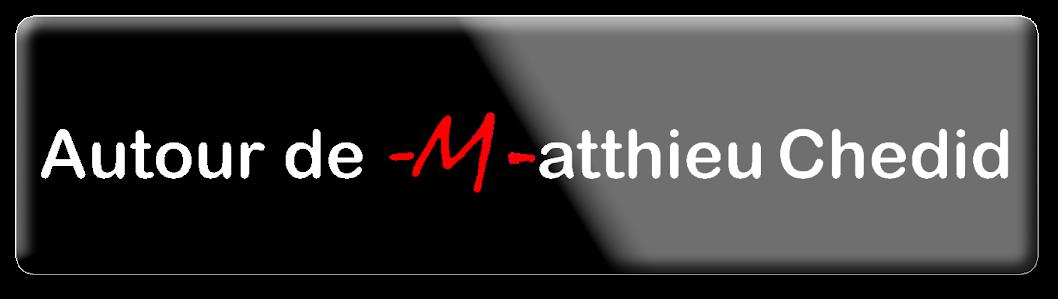 Articles Actualité Matthieu Chedid