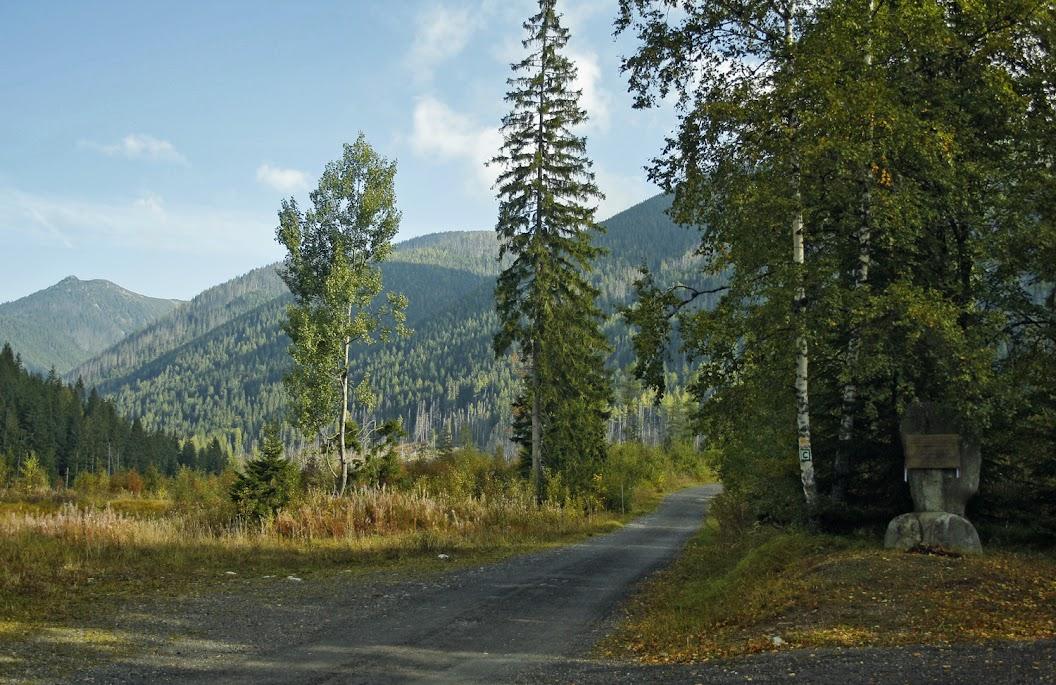 Droga do Dolny Cichej