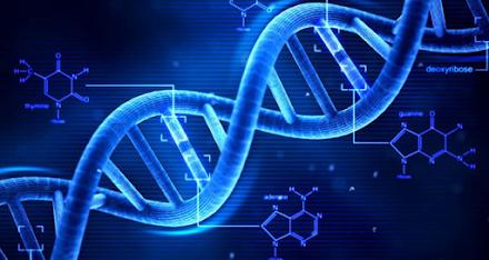 Ένζυμο των ανθρωπίνων κυττάρων δείχνει να καταρρίπτει το κεντρικό δόγμα της Βιολογίας