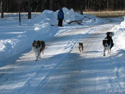 Miney, Elvis, Chance Jan 17 2010