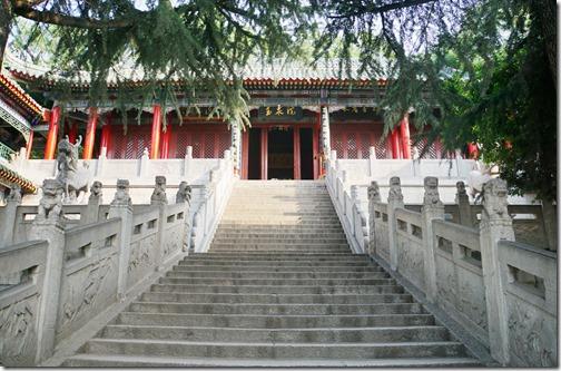 China324