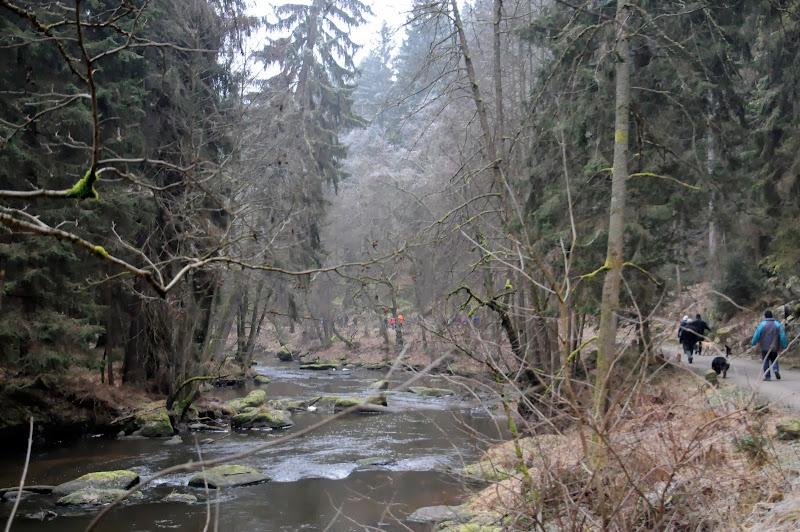 20140101 Neujahrsspaziergang im Waldnaabtal - DSC_9845.JPG