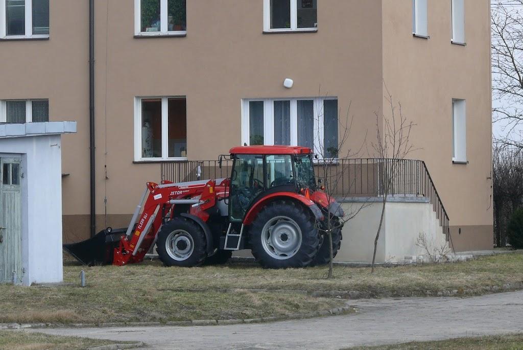 Belsk - Świerk 2011 (SB) - P1050989.JPG