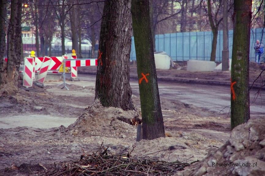 Te drzewa niestety kolidowały z planami wykonawcy
