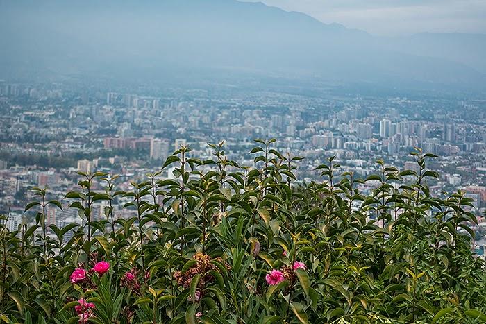 Santiago40.jpg