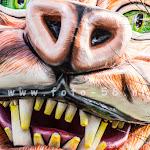 carnavalsoptocht-chaam-2016059.jpg