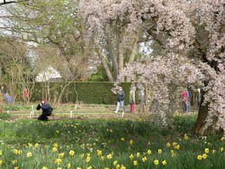 Фотограф в саду
