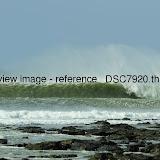 _DSC7920.thumb.jpg